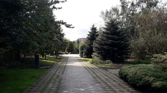 Jardin Botánico 3