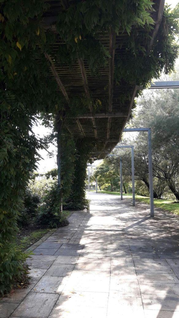 Jardin Botánico 9
