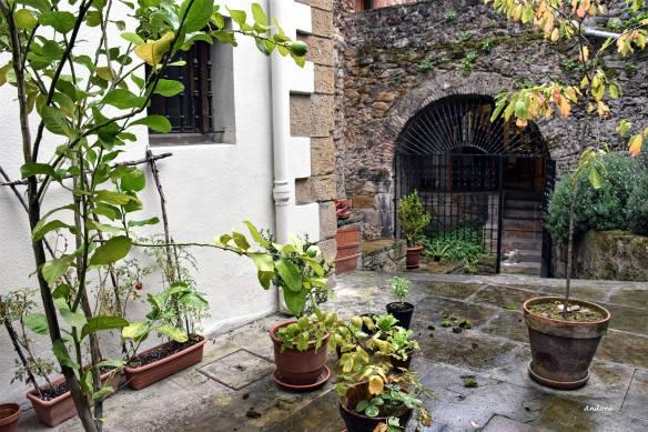 Museo Diocesano Jardin